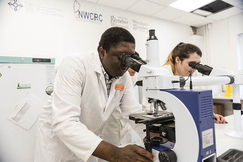 Using a microscope in a lab